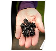 Have some blackberries... Poster