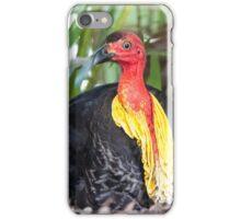 Australian Brush-turkey iPhone Case/Skin