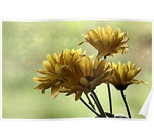 Mother Day's FLowers Poster