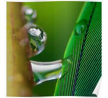 Dreams of Green Poster