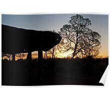 Uluru Shelter Poster