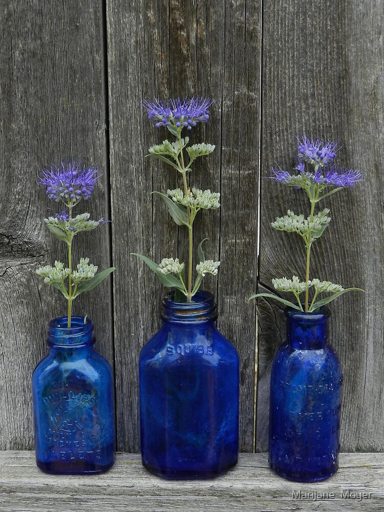Rustic Blues by Marijane  Moyer