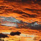 Canberra Sunset 2 by Sally Haldane