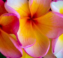 Tropical Beauty Sticker