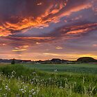 Sunset colour splash by Peter Zajfrid