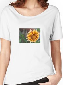 Close Up Tiger Gazania in Red, Gold and Green Women's Relaxed Fit T-Shirt