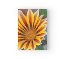 Close Up Tiger Gazania in Red, Gold and Green Hardcover Journal