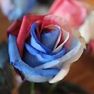 Patriotic Flower by LaurelMuldowney