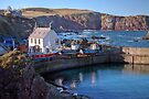 Looking Over St Abbs Towards St Abb's Head by Christine Smith