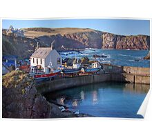 Looking Over St Abbs Towards St Abb's Head Poster