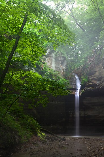 The Falls and the Mist by Adam Bykowski