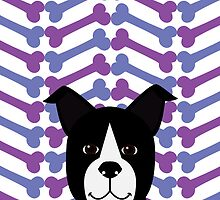Boston Terrier  by nucleotides