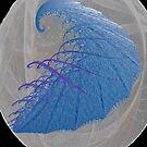 """Moon Shrimp"" by Patrice Baldwin"