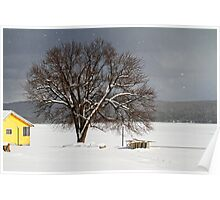 Boats Under Snow Poster
