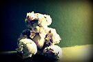 Forlorn Teddy by Evita