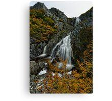 Cradle Falls Canvas Print