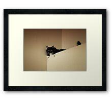 Cat mountain Framed Print