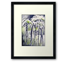 Tree ferns in the cold rainforest Framed Print