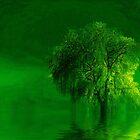 Terre verde'... by Valerie Anne Kelly