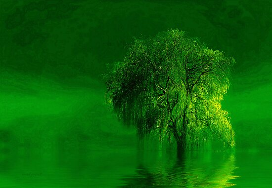 Terre verde'... by Valerie Anne Kelly