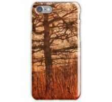 Misty Trees in Watergate Park iPhone Case/Skin