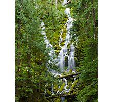 Upper Proxy Falls Photographic Print