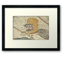 King Darius Framed Print