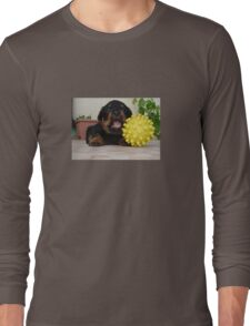 Tiny Rottweiler Puppy Playing With Large Toy Ball Long Sleeve T-Shirt