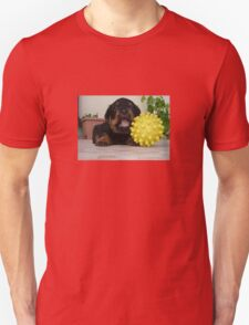 Tiny Rottweiler Puppy Playing With Large Toy Ball Unisex T-Shirt