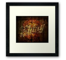Shiny Framed Print