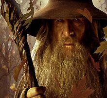 Gandalf ipod by BisKrome