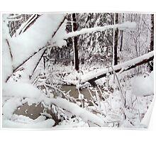 Snow in Deer Hang Out Poster