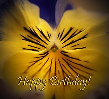 Happy Birthday Pansy card by walstraasart