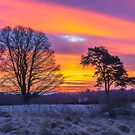 Sunrise, Winter, Snow, Dumfries by Hugh McKean