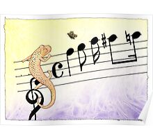 Salamander Notes Poster
