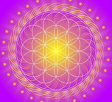 Mandala Healing Art Calendar for 2014 by shoffman