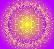 Mandala Healing Art Calendar for 2014 by Sarah Niebank