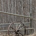 Wheel 2 by FontaineN