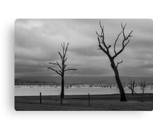 Trees at Lake Hume Canvas Print