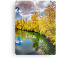 Ponds Edge... Metal Print