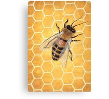 Honeycomb & Bee Canvas Print