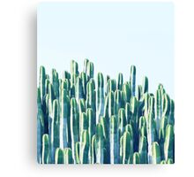 Cactus V2 #redbubble #home #lifestyle #buyart #decor Canvas Print