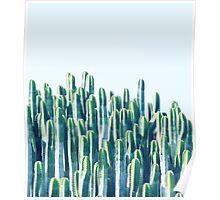 Cactus V2 #redbubble #home #lifestyle #buyart #decor Poster