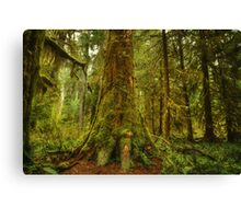 Giants Foot Canvas Print