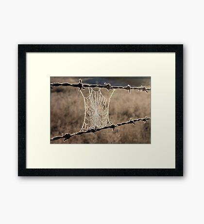 Frozen Web Framed Print