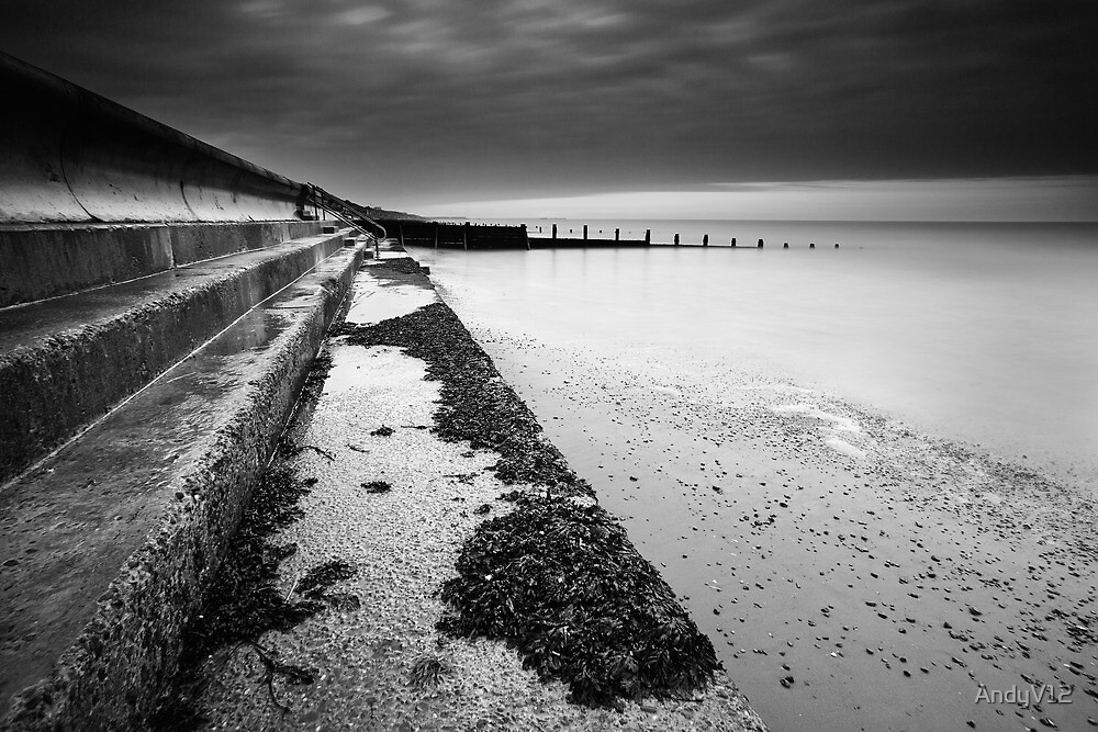 Another Feather In My Cap BW by Andy Freer