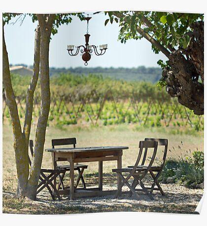 Provence garden Poster