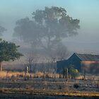 First Light - Dunedoo NSW Australia by Bev Woodman
