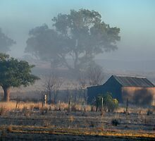 First Light - Dunedoo NSW Australia by Bev Woodman