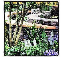 Designer Garden - Chelsea Photographic Print
